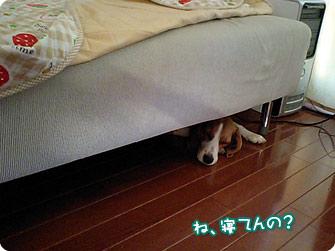 ね、寝てんの?