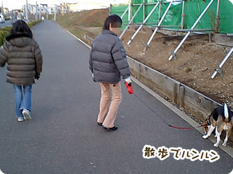 散歩でルンルン
